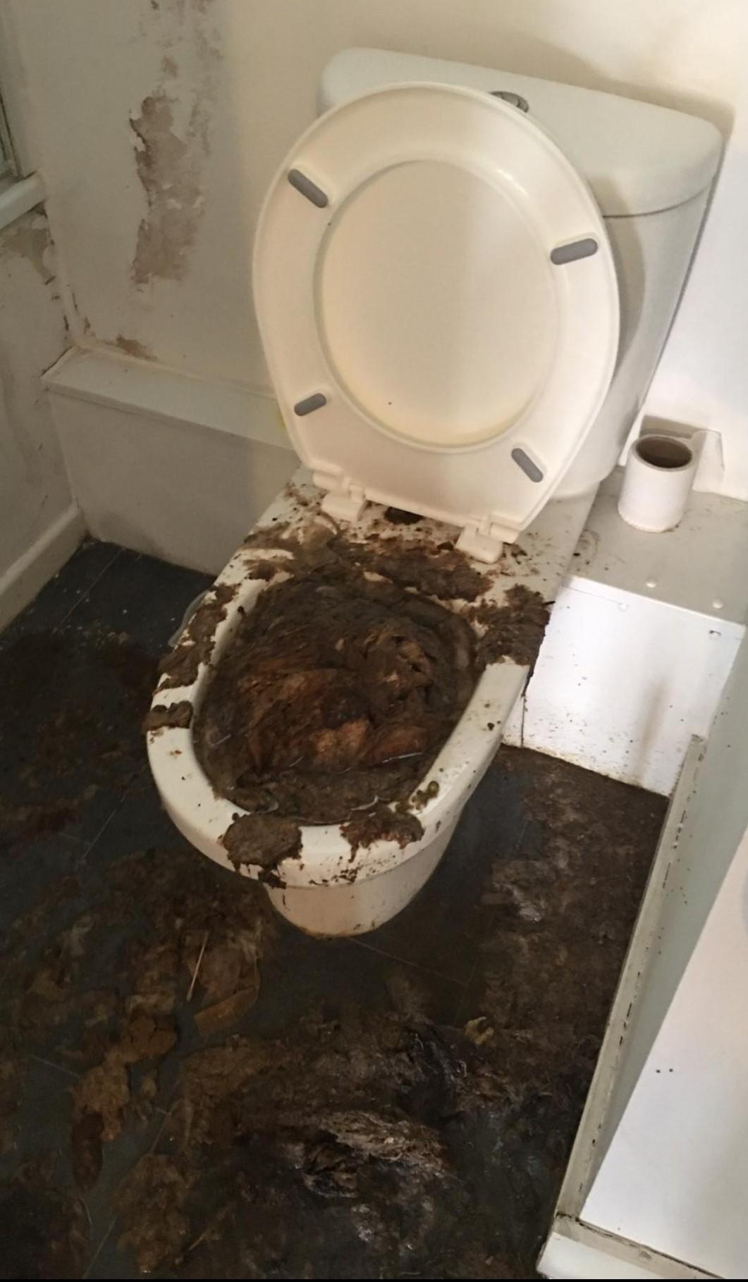 Blocked Toilet